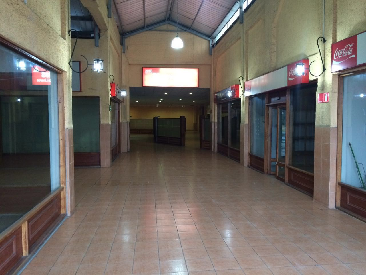 Terminal Linares - 1