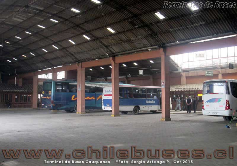 Terminal Cauquenes - 3