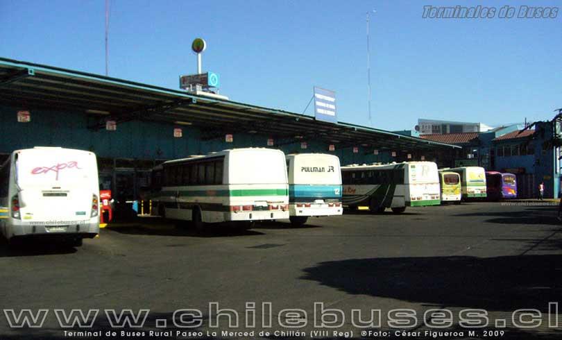 Terminal Chillán - 4