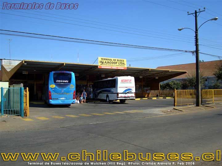 Terminal Mulchén - 3
