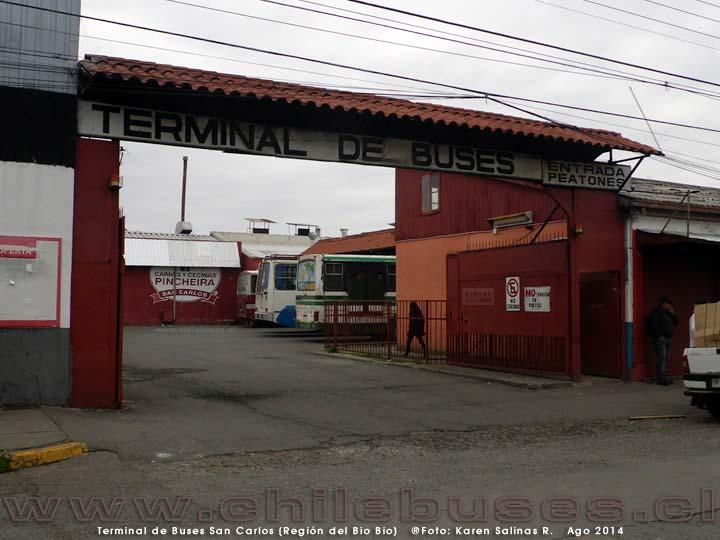 Terminal San Carlos - 2