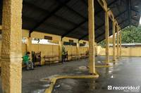 Terminal Pucón - JAC - 1 thumb