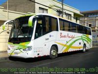 buses-amistad-1 thumb