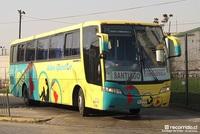 buses-combarbala-4 thumb