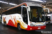 buses-evans-2 thumb