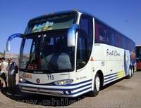 buses-geminis-4 thumb