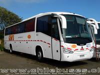 buses-geminis-5 thumb