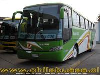 buses-ggo-3 thumb