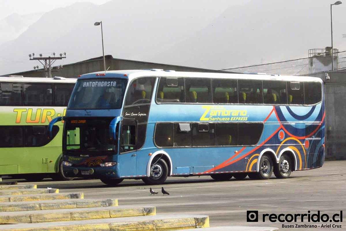 buses-horizonte-1