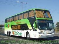 buses-nilahue-6 thumb