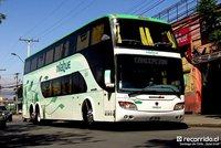 buses-nilahue-3 thumb