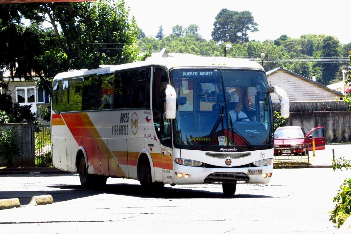 Buses Pirehueico