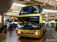 Buses-Romani-3 thumb