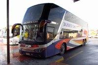 Buses TJM - 1 thumb