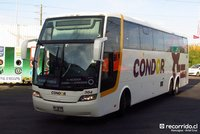 Condor-Bus-3 thumb