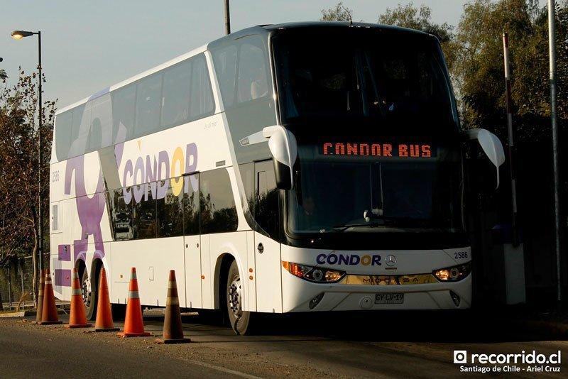 Condor-Bus-2