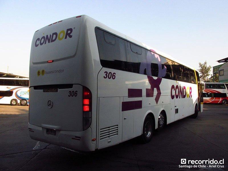 Condor-Bus-4