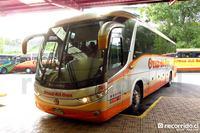 buses-cruz-del-sur-3 thumb