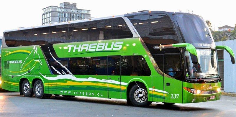 Thaebus-2