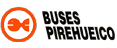 Buses Pirehueico logo